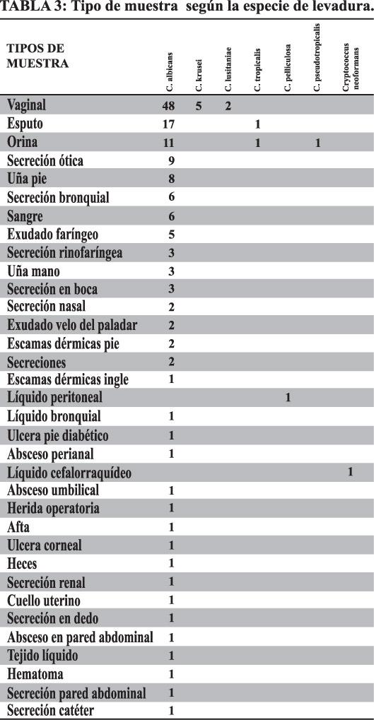 levadurasB14-T3