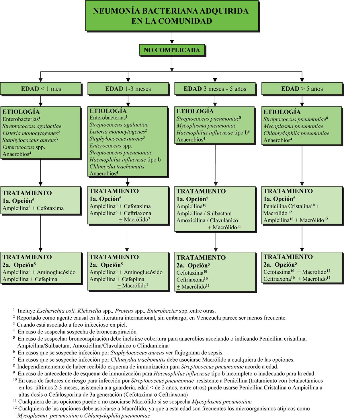 botica16-F1