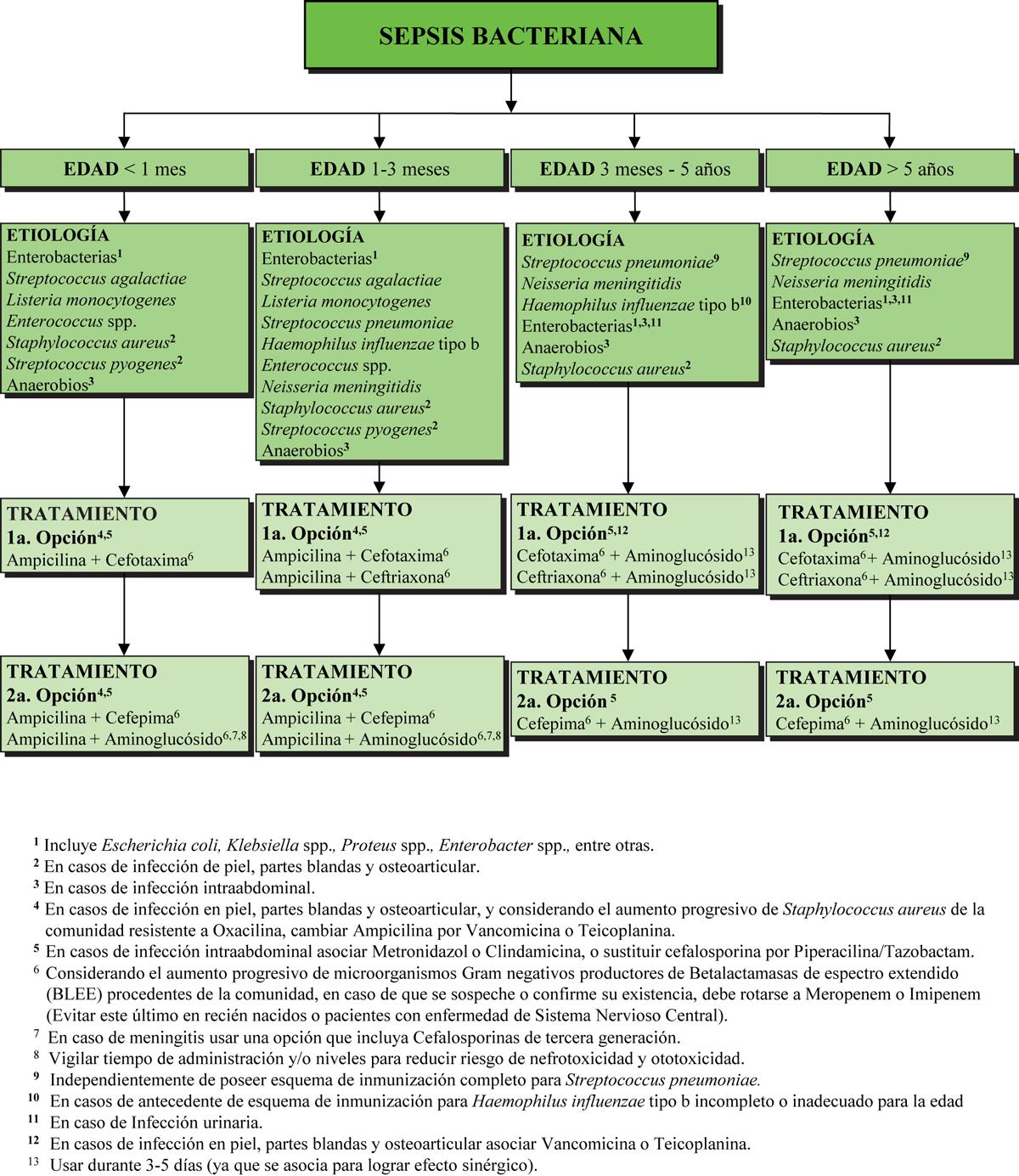 botica16-F11