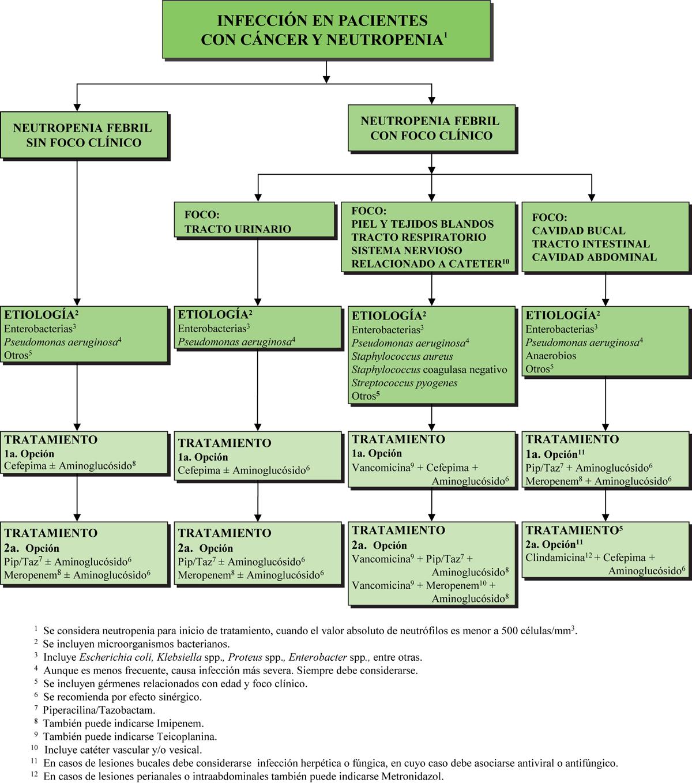 botica16-F12