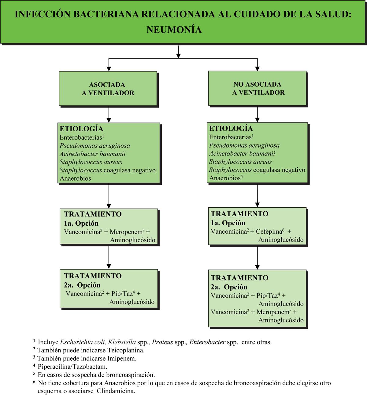 botica16-F13