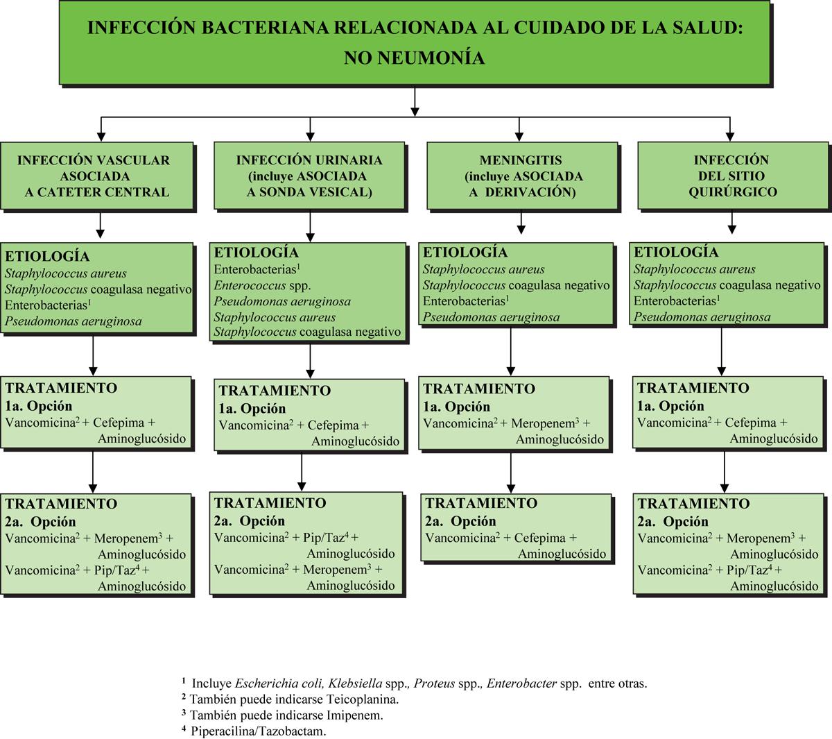 botica16-F14