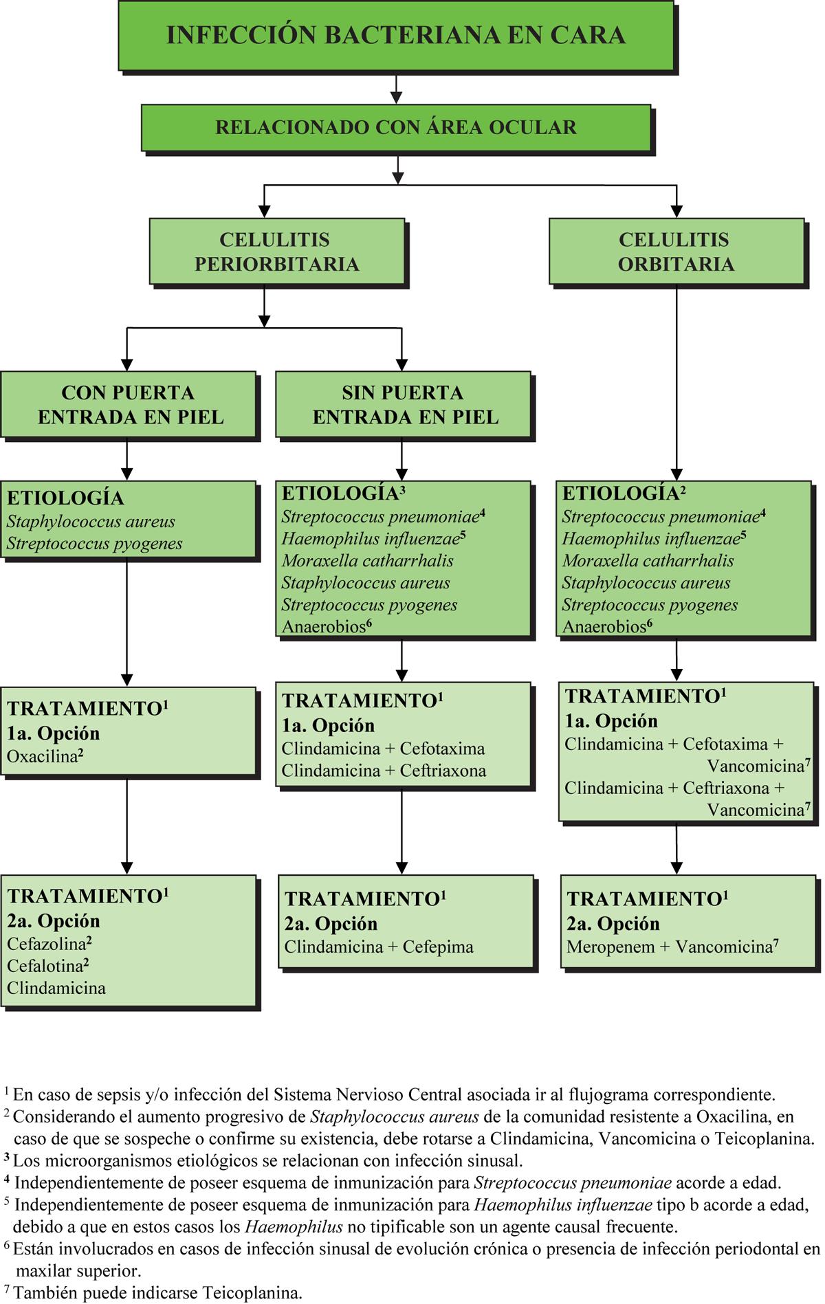 botica16-F6