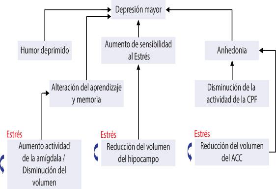 depremedicinB18-F1