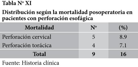 cqperfesofagB41-T11